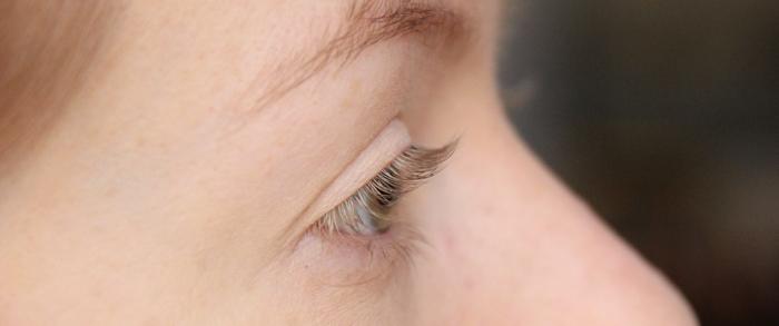 Eyelashexpress - 1